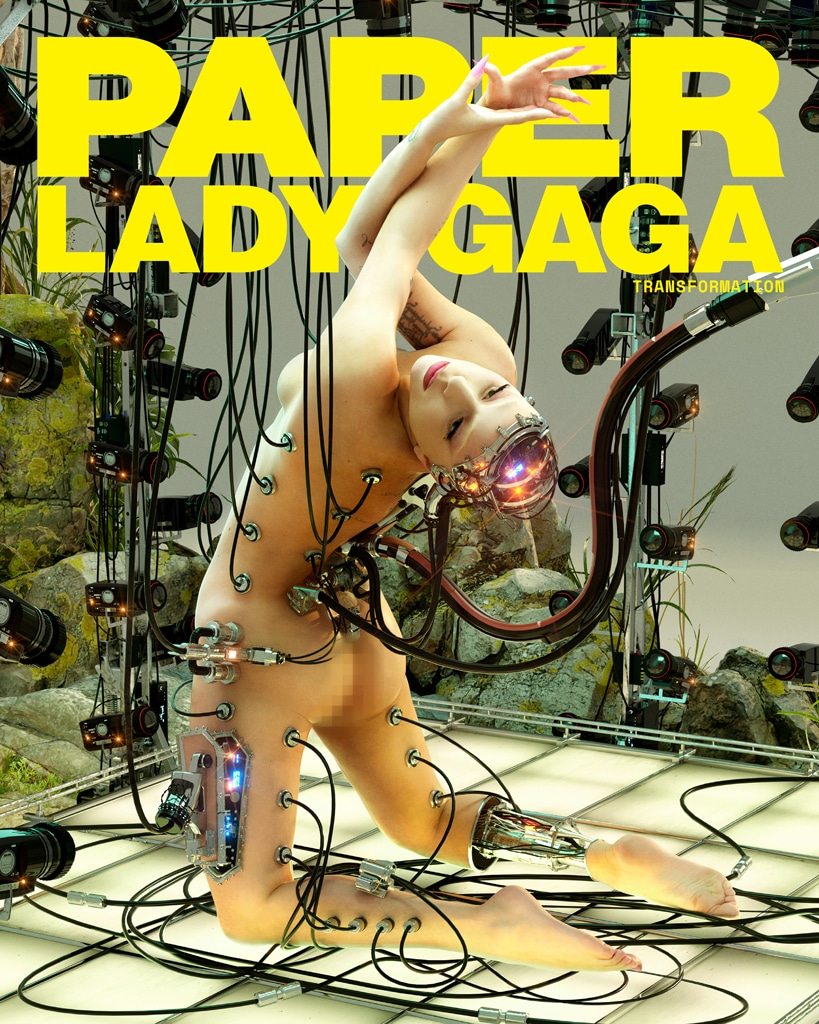 Lady Gaga, Paper Magazine