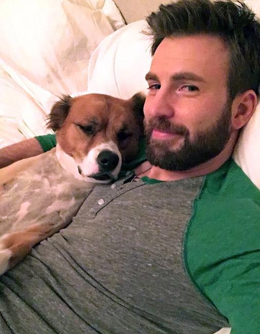 Chris Evans, dog, Dodger, National Puppy Day 2020