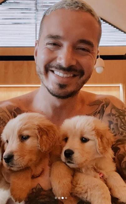J Balvin, dog, National Puppy Day 2020