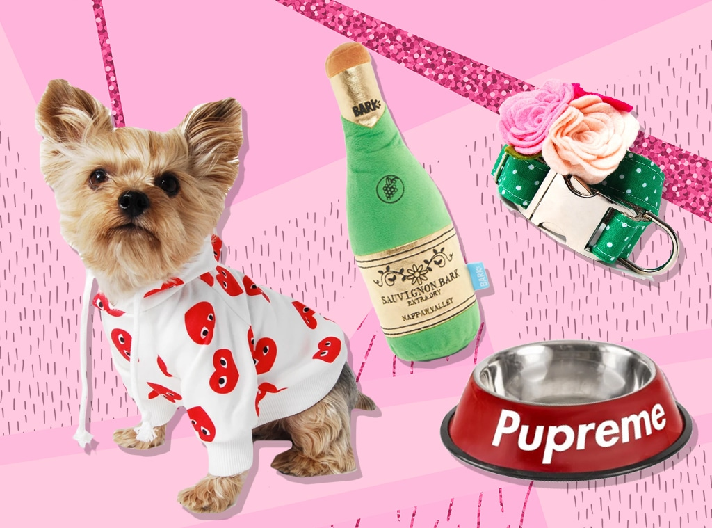 E-Comm: Just 21 Cute Things to Celebrate National Puppy Day