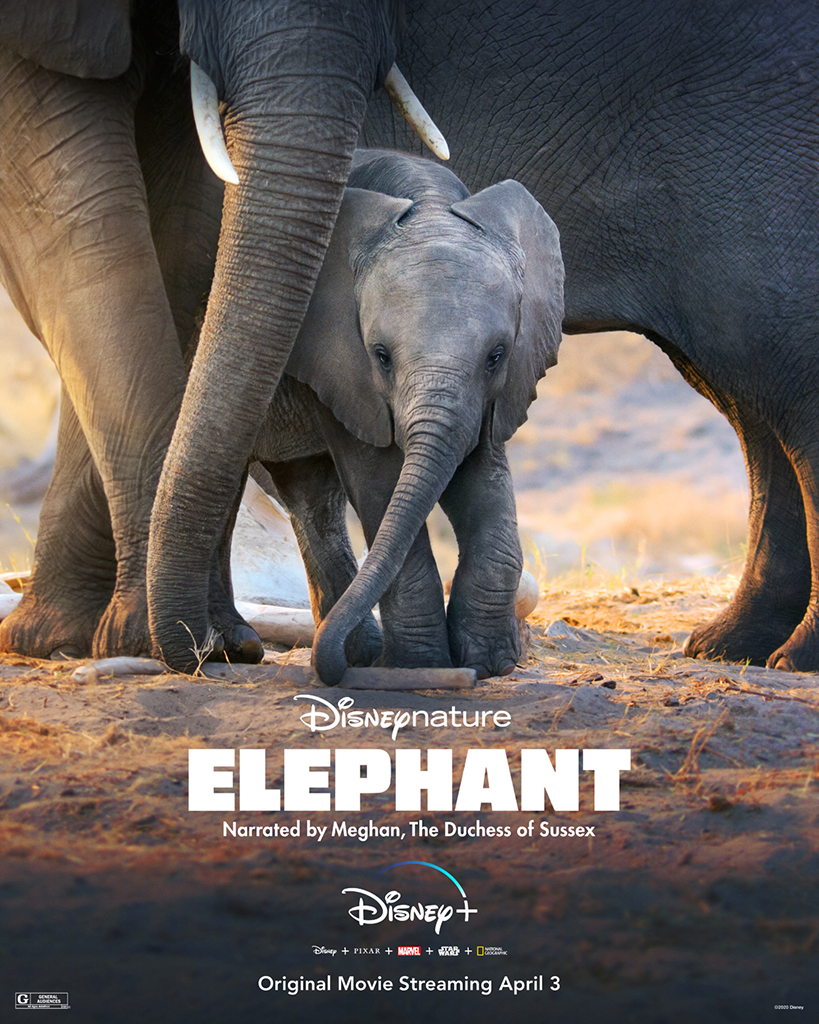 Meghan Markle, Disneynature, Elephant, Documentary