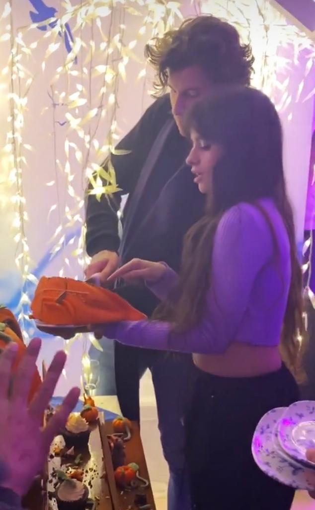 Camila Cabello, Shawn Mendes