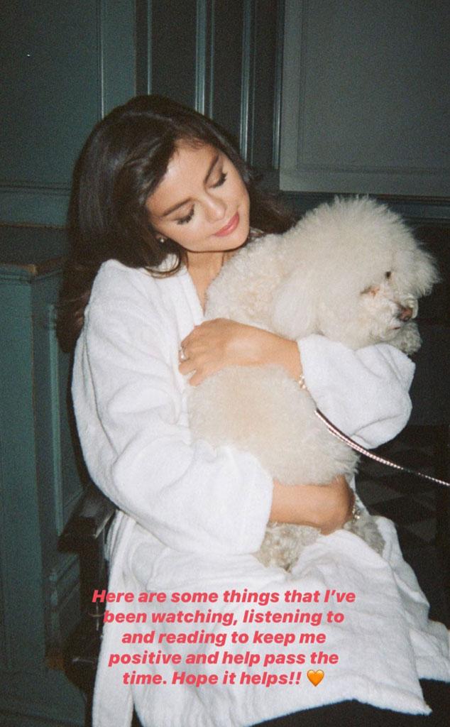 Selena Gomez, Social Distancing Guide, IG Stories