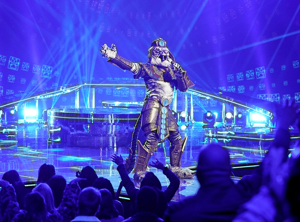 The Masked Singer, White Tiger