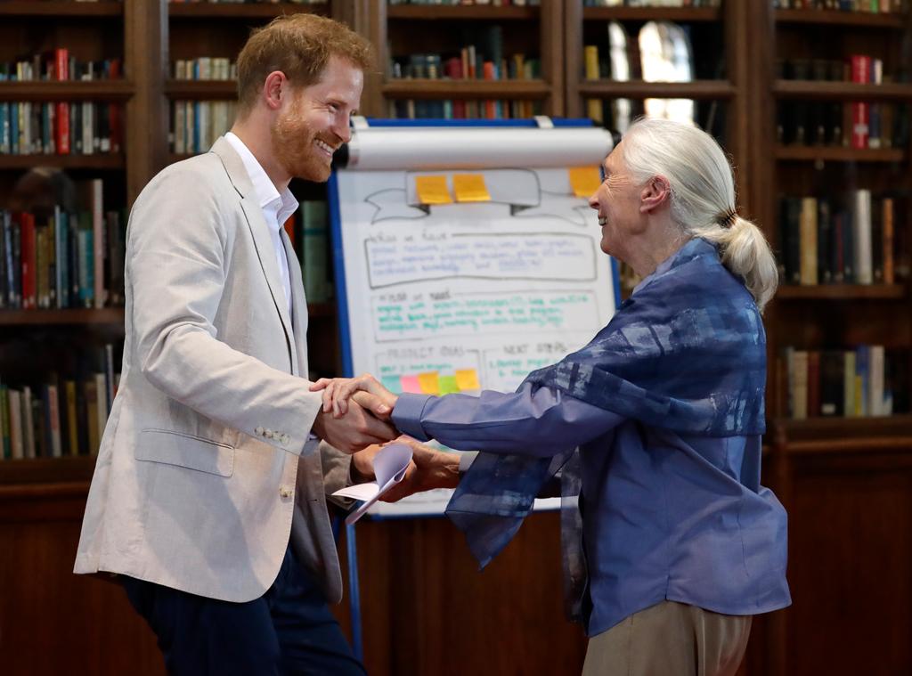 Prince Harry, Dr. Jane Goodall, Jane Goodall