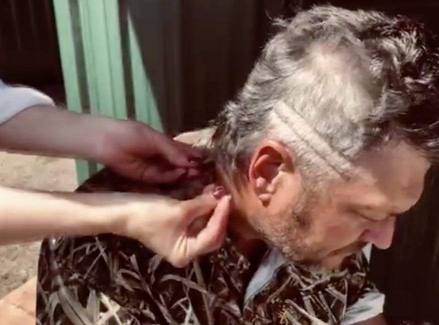 Blake Shelton, Nicola Peltz, At-Home Hair Transformations