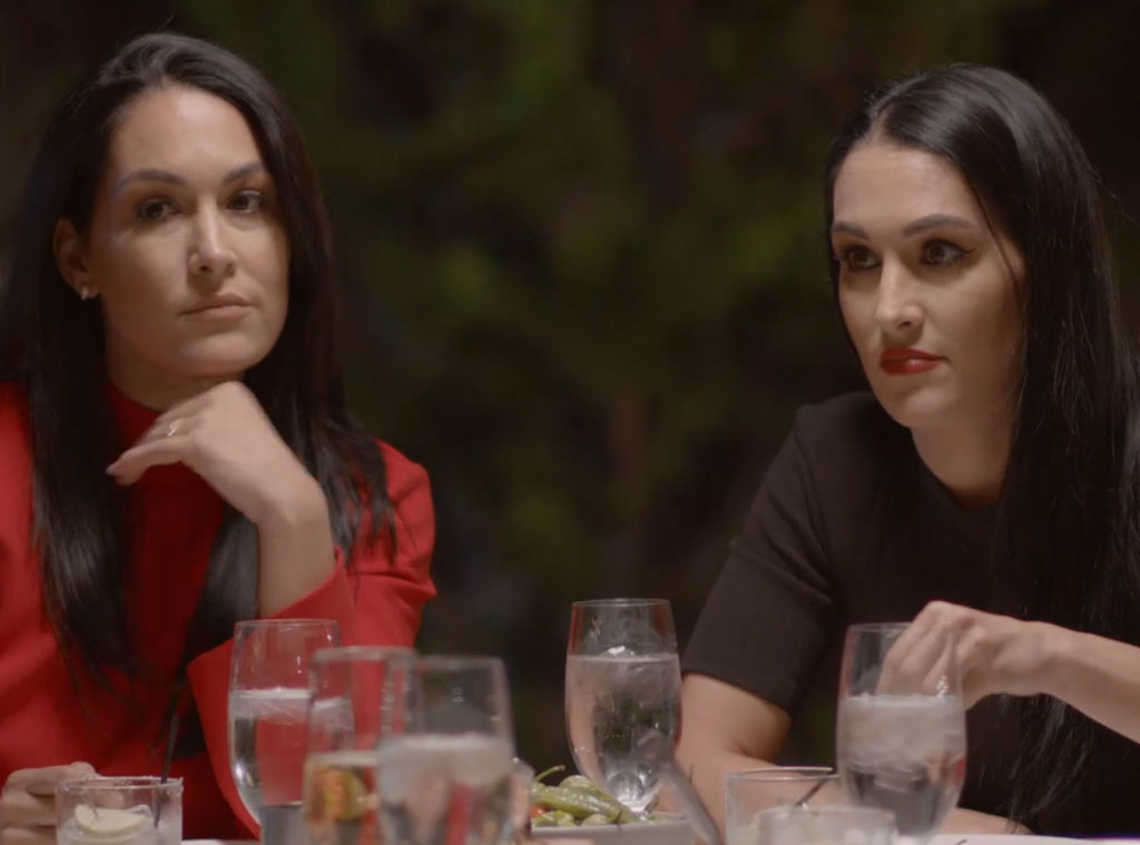Brie Bella, Total Bellas 502
