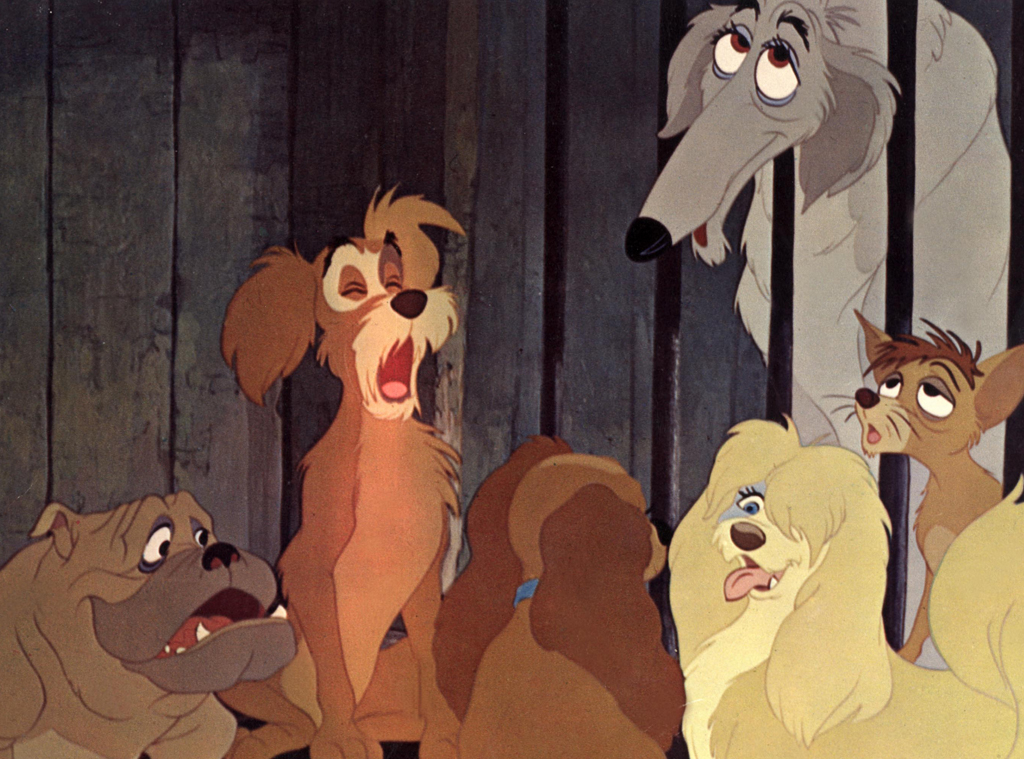 14 Doggone Adorable Secrets About Disney S Lady And The Tramp E Online