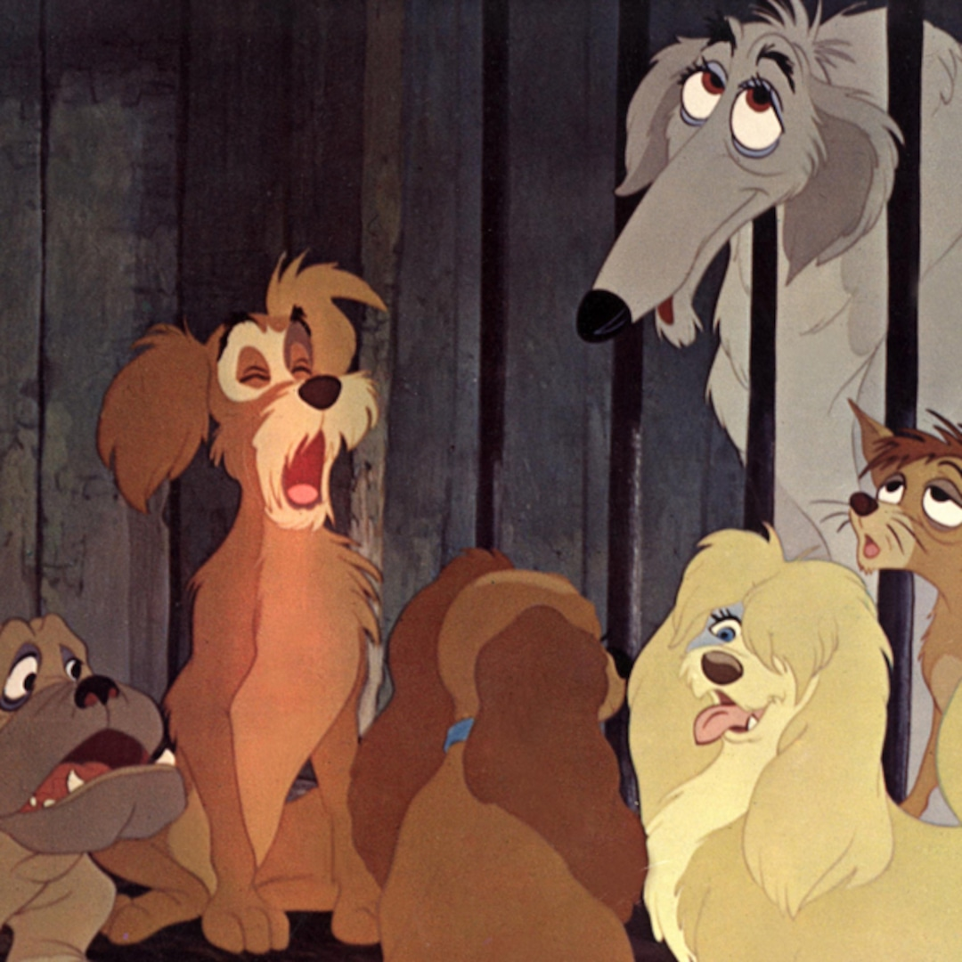 Photos From 14 Doggone Adorable Secrets About Disney S Lady And The Tramp E Online Ca