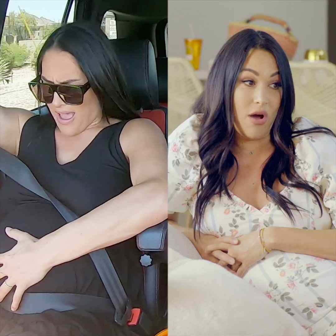 First Look at Total Bellas Season 6: Brie & Nikki Bella Are Pregnant Mid-Pandemic!