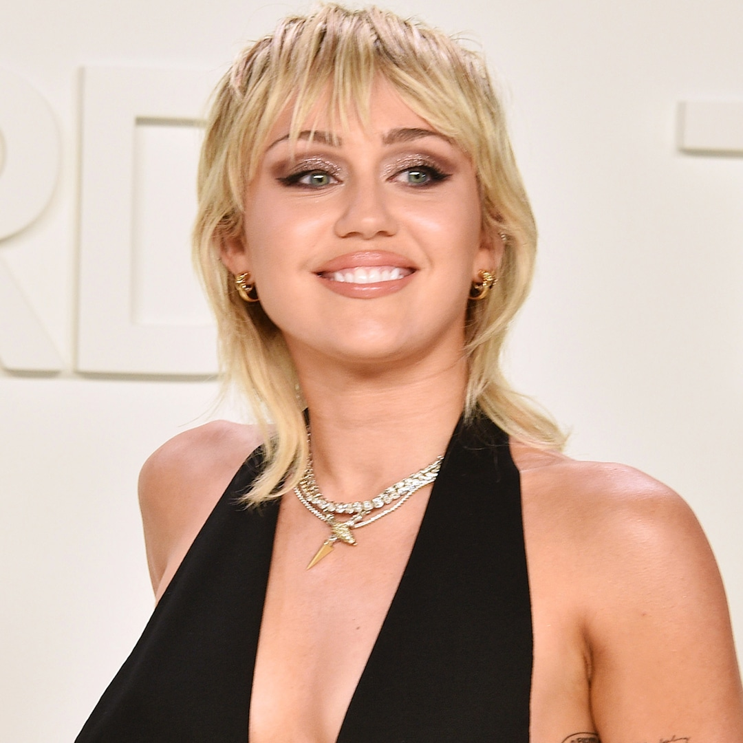 "<p>Miley Cyrus Welcomes New Pit Bull 2 Months After Saying Goodbye to""Best Friend"" Mary Jane thumbnail"