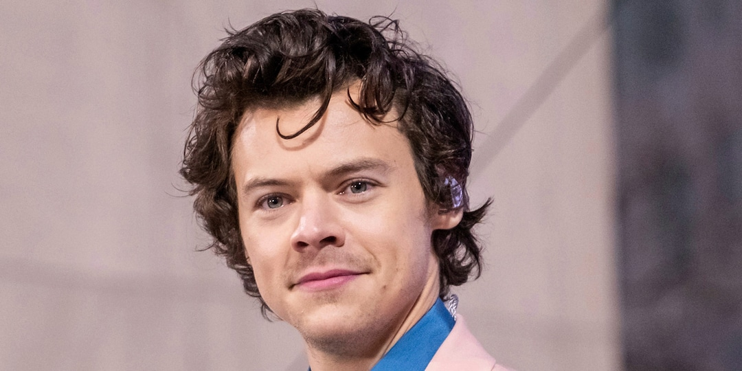 You'll Adore This Video of Harry Styles Getting Fans to Sing Happy Birthday to His Mom - E! Online.jpg