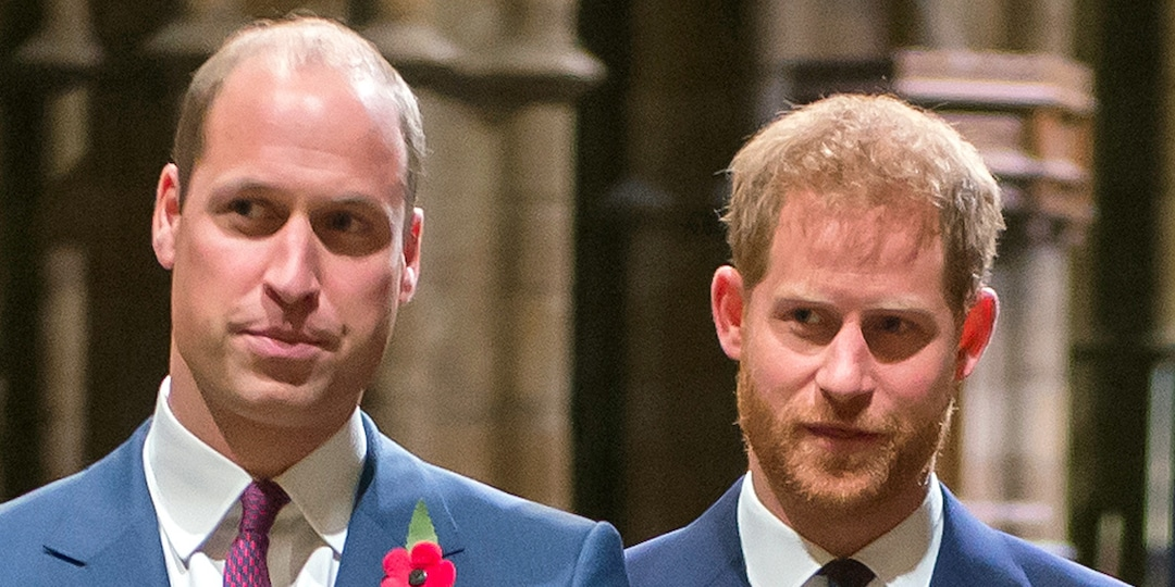 Why Prince Harry and Prince William Won't Walk Together at Prince Philip's Funeral - E! Online.jpg
