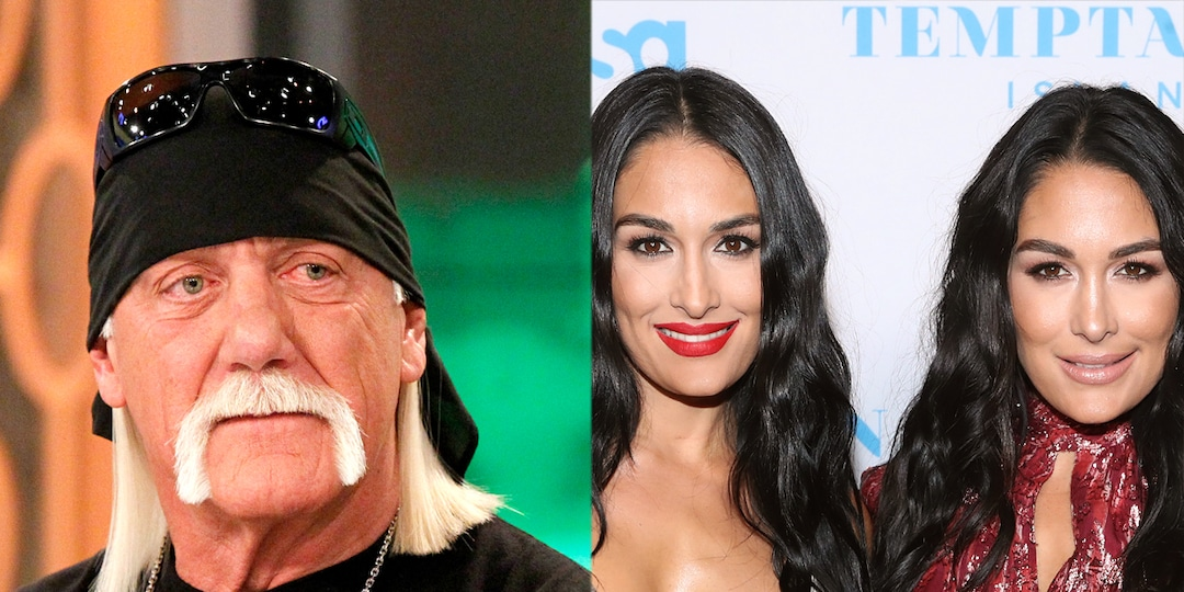 Why Hulk Hogan Couldn't Tell Brie & Nikki Bella Apart at the WWE Hall of Fame Ceremony - E! Online.jpg