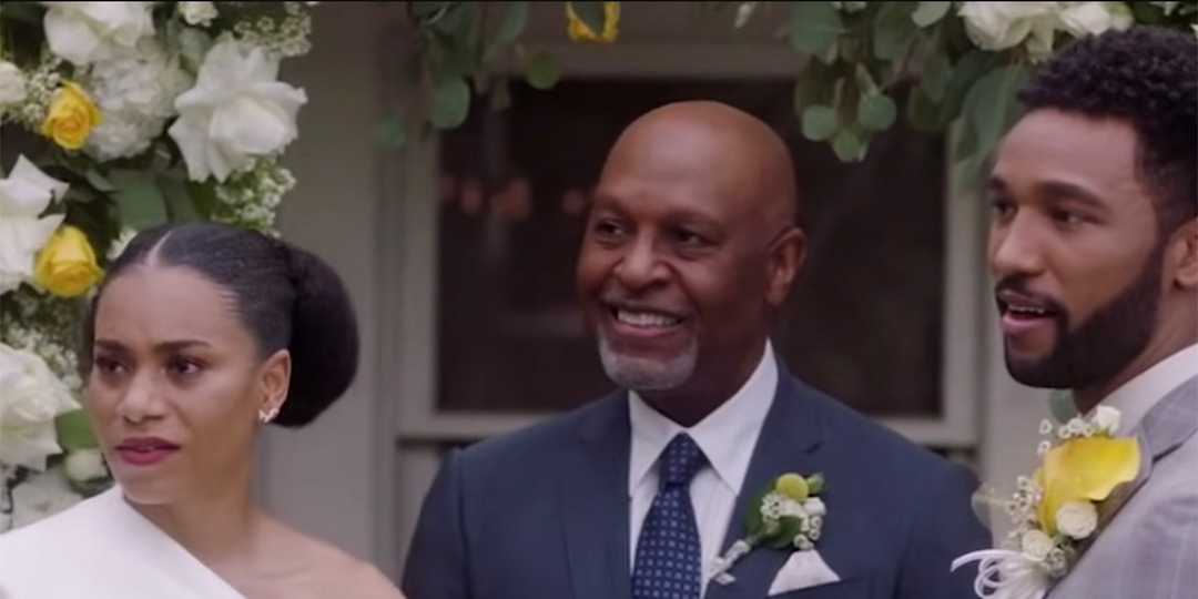 Grey's Anatomy's Kelly McCreary and Anthony Hill Offer Some Promising Season 17 Finale Teases - E! Online.jpg
