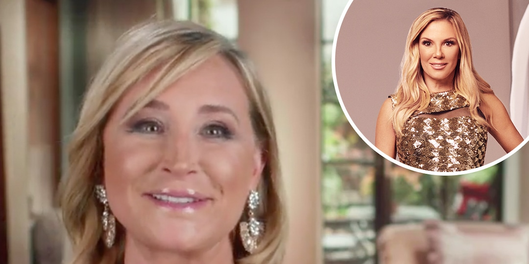 """Sonja Morgan Is """"Suspicious"""" of Ramona Singer's Male Model Date in Hilarious RHONY Preview - E! Online.jpg"""
