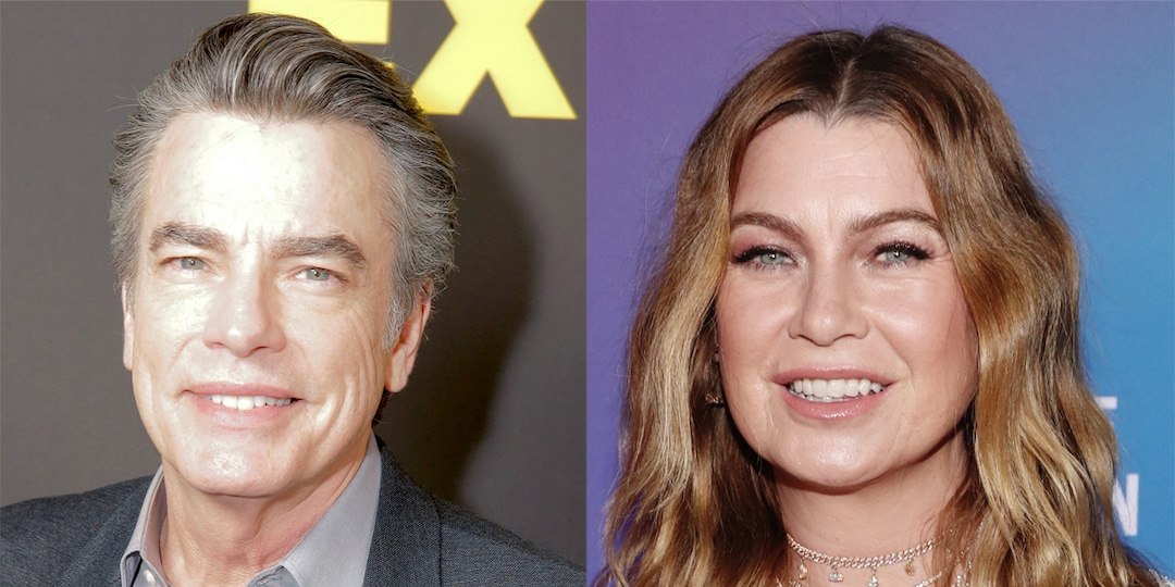The O.C.'s Peter Gallagher Joins Season 18 of Grey's Anatomy - E! Online.jpg