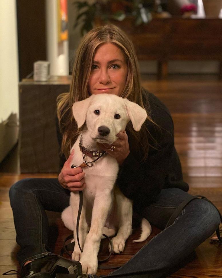 Jennifer Aniston, National Dog Day, Instagram
