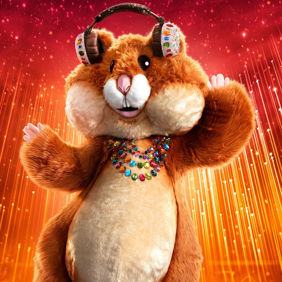 The Masked Singer Reveals the Celebrity Behind the Hamster