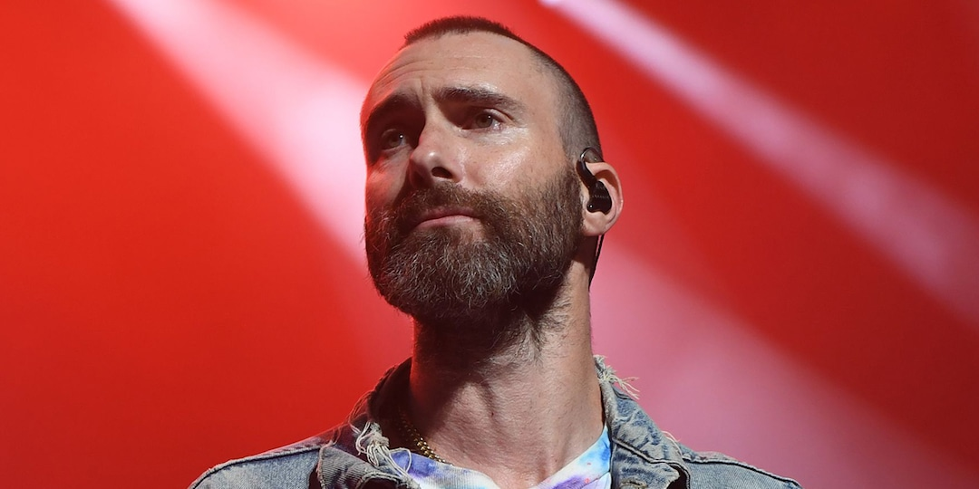 See Adam Levine's Surprised Reaction After Fan Jumps Onstage During Maroon 5 Concert - E! Online.jpg